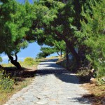 The main footpath from Hydra to local villages