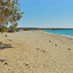 Backed by pine trees, Makrigialos beach has natural shade.