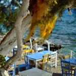 Set beside the sea, lunch or dinner here is an idyllic experience