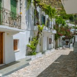 Cute houses adorned with flowers line every street in the Chora